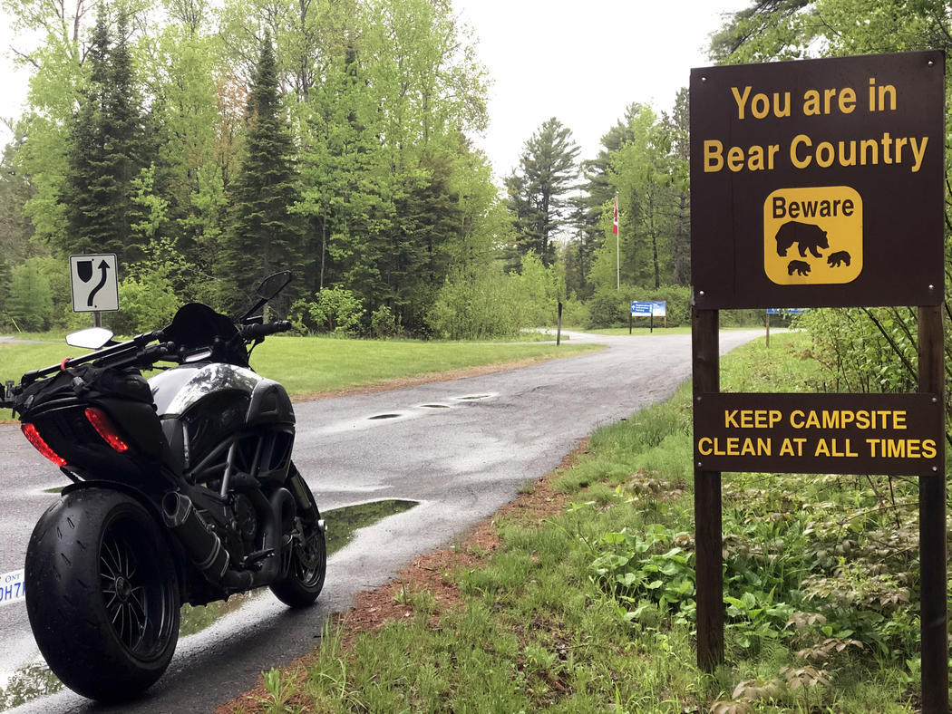 motorcycle camping in bear country