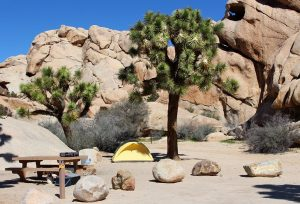 california-joshua-tree-national-park-hidden-valley-campground