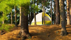 how to pick campsite